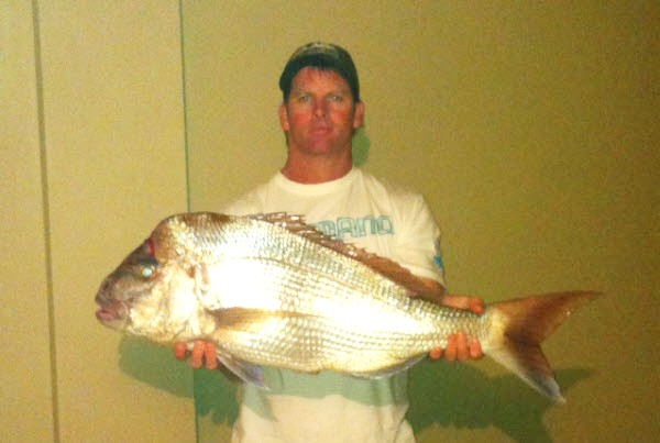 Pink Snapper - Damien Wham - Aug 2011