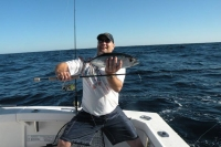 Darren Burleigh - light tackle southern bluefin tuna